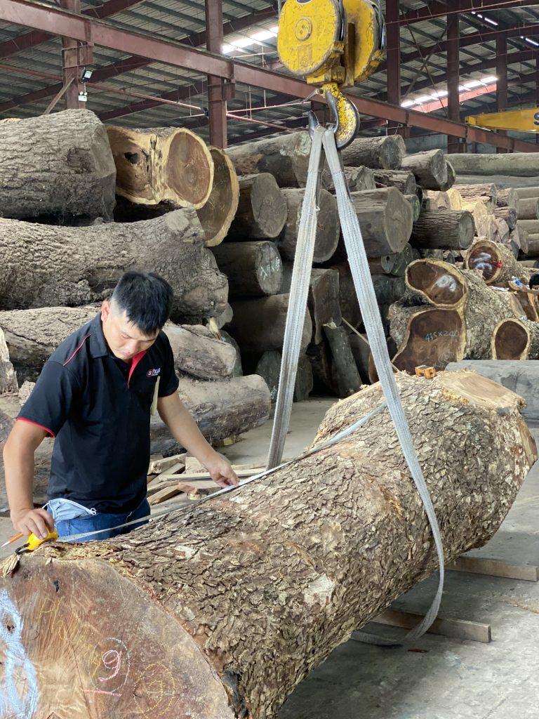 Chất lượng gỗ tự nhiên nguyên tấm phụ thuộc điều gì ?